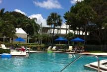 Hilton Longboat Key / Photos from my stay in 2012
