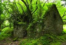 respiro verde