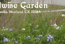 Yardwise Garden / Located adjacent to the Stella Roberts Recycling Center in Pearland TX (5800 Magnolia Dr, Pearland, TX 77581).  Park in front of the recycling center, the garden is outside the recycle center fence to the east.