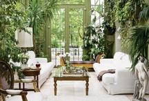 Garden room/patio/sunroom