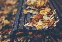 Inspiration leaf