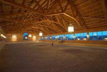 Reithalle - indoor Arena