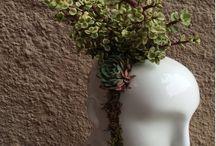 bloem stuk op hoofd