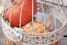 Bird cage ideas