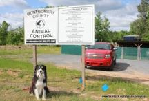 Trip to Montgomery County Animal Control, Mount Gilead NC / I am an AmbassaDog for rural animal shelter assistance.  This is a trip made recently by my Foundation