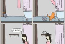 Cats's world