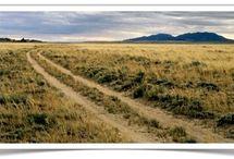 Wonderful Wyoming / by Cinda Gibbs