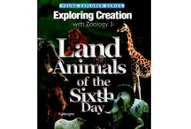 Zoology 3 Extras! / Hands on experiments, activities and projects to journey further with Apologia's Exploring Creation with Zoology 3!