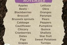 Cooking Seasonally In November