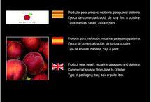 Bracfruit SAT 5002 / Cooperativa de Fruita d'Aitona