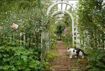 """Country Gardens / """"The lesson I have thoroughly learnt, and wish to pass on to others, is to know the enduring happiness that the love of a garden gives. """" Gertrude Jekyll"""