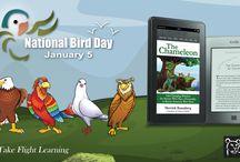 National Bird Day / Support bird wildlife on #NationalBirdDay. All purchases of #TheChameleon ebook January 5-7, 2017 benefit @BornFreeUSA amzn.to/2bnUzEP