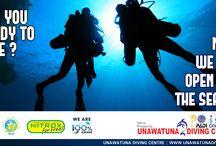 Unawatuna Diving Adverts