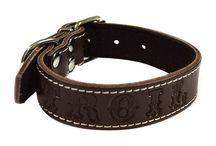 COLLARES PERSONALIZADOS PARA PERROS / Extensa línea de collares para perros personalizados con número de teléfono y/o nombre a elección de nuestros clientes.