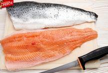 """A scuola di pesce / Il blog """"Passione Pesce"""" nasce dal piacere di scrivere di un gruppo di appassionati addetti del settore, da sempre impegnati nel mondo della pesca (sportiva e d'altura), della cucina e del mondo """"ittico"""" a 360°."""