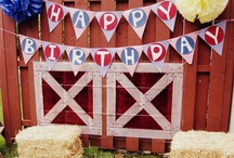 Farm Birthday Party / by Wendy Robinson
