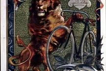 bicaj / bike