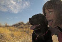 De perros y humanos  / No sólo de fotografía canina vive el perro. También de fotografía con su manada.