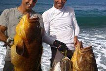 Pesca deportiva desde Kayak / Apasionante mundo de la pesca deportiva desde Kayak.