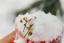 Snow tea