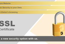SSL Certificate / It secures the data and the website.
