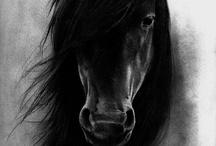Paard Kunst