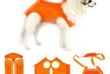 cargador perro