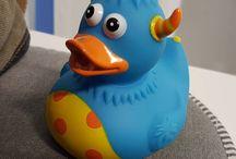 Enten / Ducks