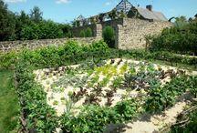middeleeuwse tuin 500-1500 / 500-1500