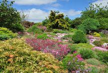 Devon: golvend en verstild landschap / De tuinen die zich in Devon bevinden, behoren zonder enige twijfel tot de allerbeste van het Verenigd Koningkrijk. Straalt het golvende verstilde landschap al een bijna tastbare schoonheid uit, de tuinen die zich hierin bevinden volmaken het!