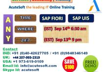 Get $100 off on SAP FIORI & SAP UI5 Online LIVE FREE DEMO from Acutesoft with Real time scenarios.