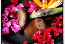 Nature / The lush and beautiful nature around Shanti Maurice