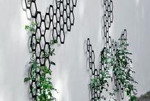 metal trellis for plants / by Sydney Traylor