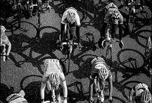 Cycling Shitt