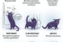 Guia animales
