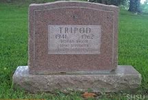 Grave of Tripod / 17th Street (1962)