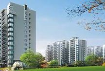 Residential Property in Noida, Greater Noida / Ongoing residential apartment projects in Noida. Find the best new upcoming residential projects in delhi ncr with completed flats, houses projects for sale in Delhi NCR. Buy 1, 2, 3 & 4 BHK.