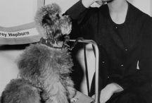 Audrey Hepburn / Elegance personified