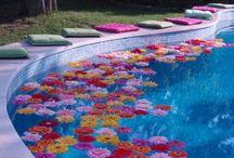 Kvety-bazen