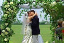 Weddings / by Shaylea Flasch