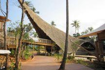 bambú rumah
