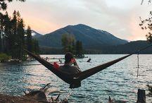 hammock and swings