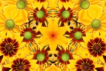 Sunflowers...art