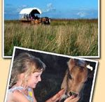 Laura's Little Houses Vacation :) / Dream vacation of visiting the sites of Laura Ingalls Wilder and her family  / by Misty B