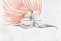 Birds / Original artworks by myself