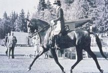 1952 Helsinki Olympics