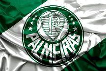 Sociedade Esportiva Palmeiras / @Palmeiras