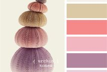 Colors I like-colore / by Samantha Atkinson