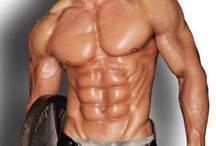 Greatest Bodybuilding Workout Routines For Thin People