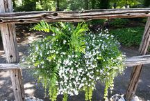Inspiration jardinières / Vous cherchez de nouveaux modèles de jardinières? Ici quelques photos provenant de la Pépinière Villeneuve.